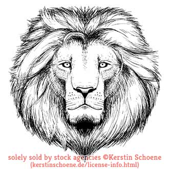 lion, vector, tattoo, lineart, sketch, stock, image, vector, art,